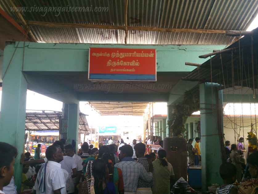 Thayamangalam Muthumariamman Temple Bus Route and Best Pooja Timings